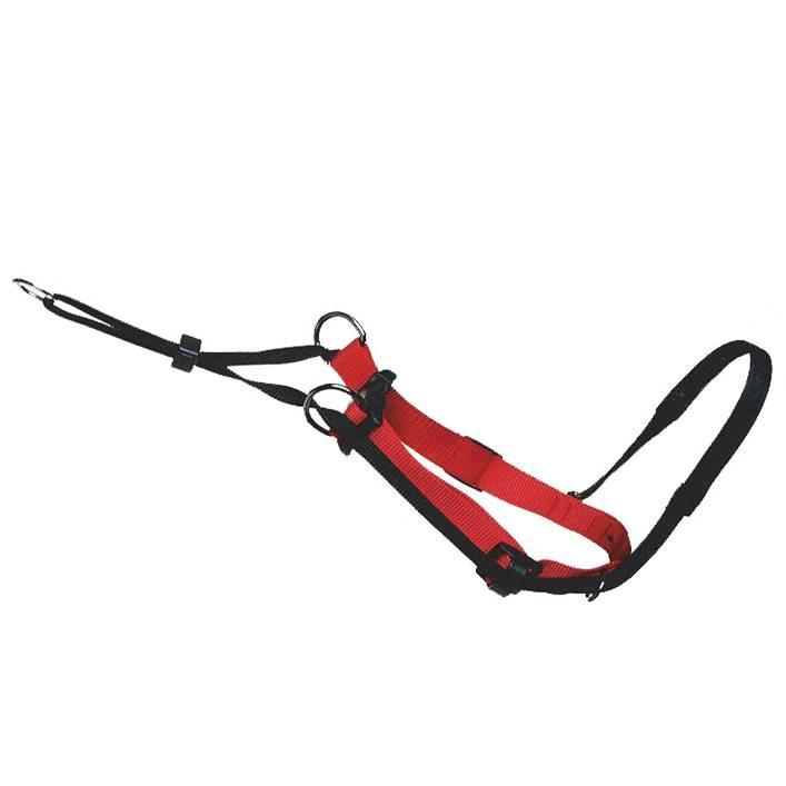 sporn dog head halter
